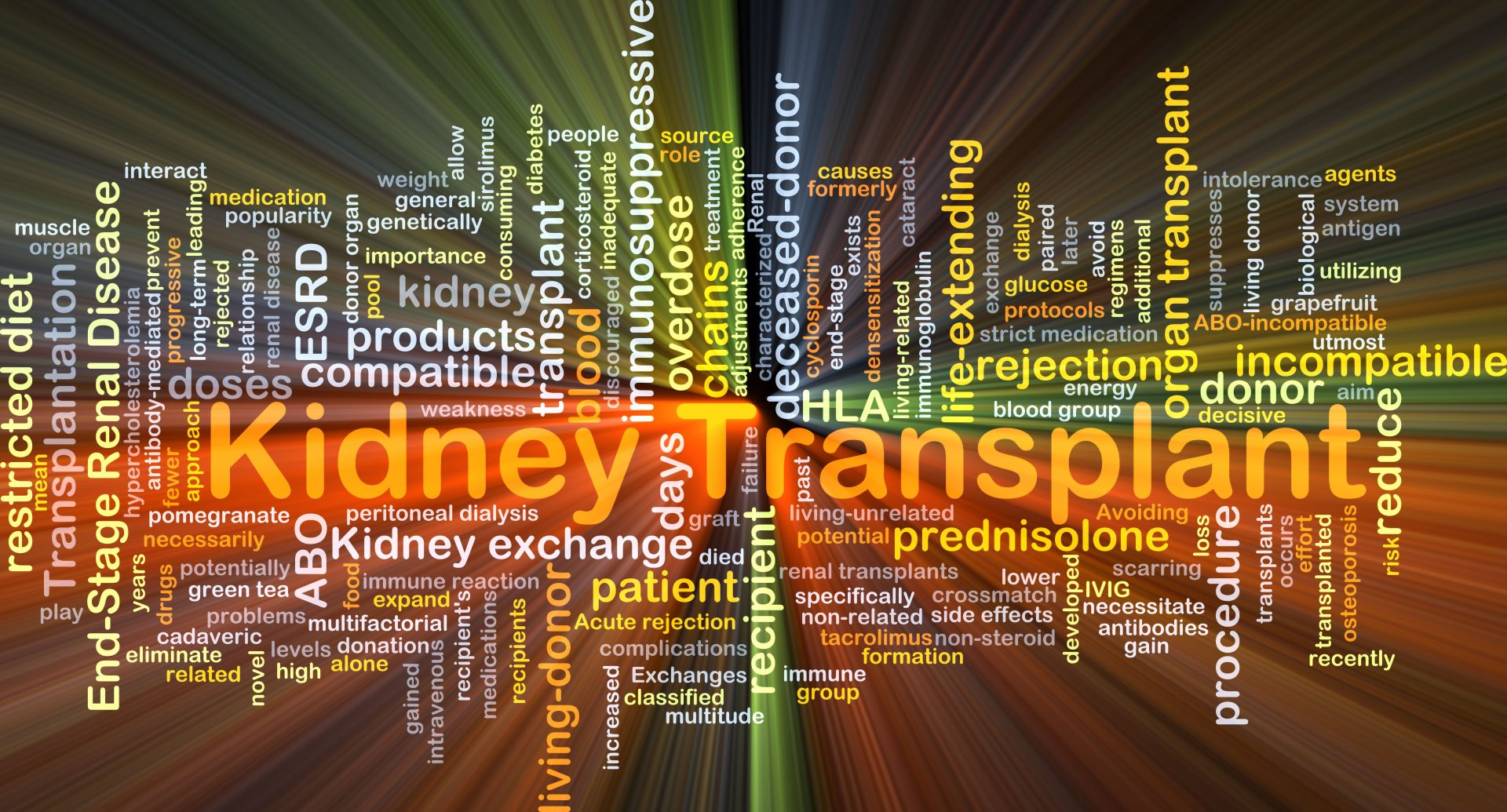 What is Kidney Transplant?
